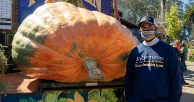 Monster Pumpkin Crowned 'Largest Grown in North America'